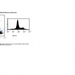 CD38 MONOCLONAL ANTIBODY